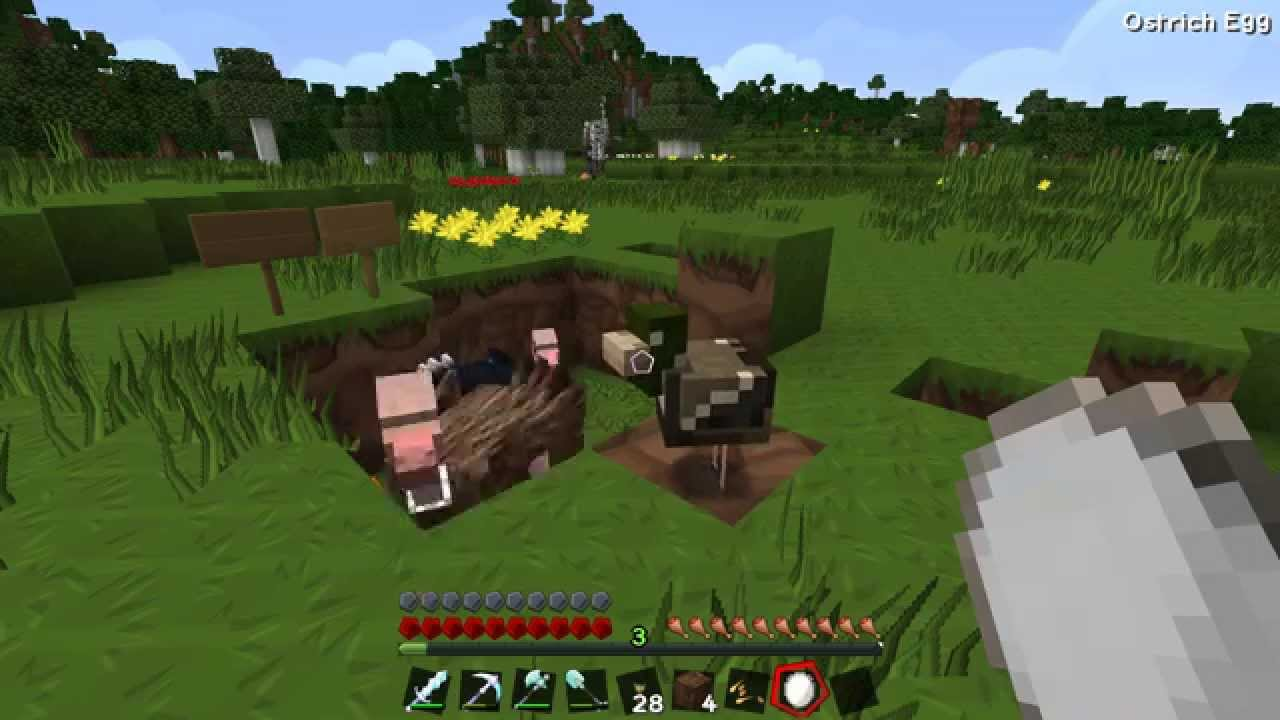 Minecraft mo creatures how to get an ostrich egg 1.10.2